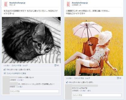 facebook 活用 事例 プロモーション BeautyExchange.jp 投稿1