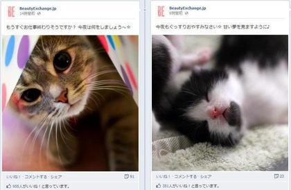 facebook 活用 事例 プロモーション BeautyExchange.jp 投稿3