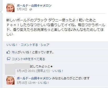 facebook 活用 事例 プロモーション ボールド-山田キャメロン P&G 投稿 2