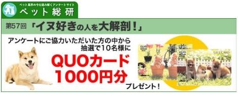 ペット総研 第57回アンケート調査「イヌ好きの人を大解剖!」
