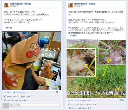 facebook 活用 事例 プロモーション 感動野菜産直農家 寺坂農園