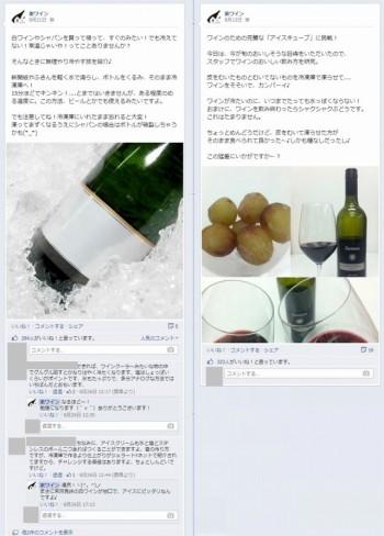 Facebook 活用 事例 プロモーション 家ワイン