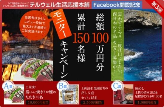 """""""NTT西日本グループ テルウェル西日本 Facebookページ開設記念モニターキャンペーン"""