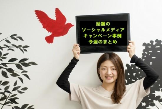 [2013年12月第2回]話題のソーシャルメディアキャンペーン事例 今週のまとめ!《アディダス ジャパン、静岡県、タマホームなど10選》