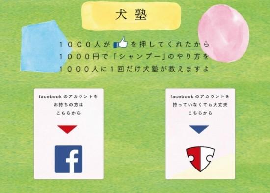 愛犬家のための塾『犬塾』 1, 000「いいね!」を記念して、「1, 000人シャンプーレッスンキャンペーン」
