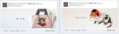 Facebook 活用 事例 プロモーション マッシュノート