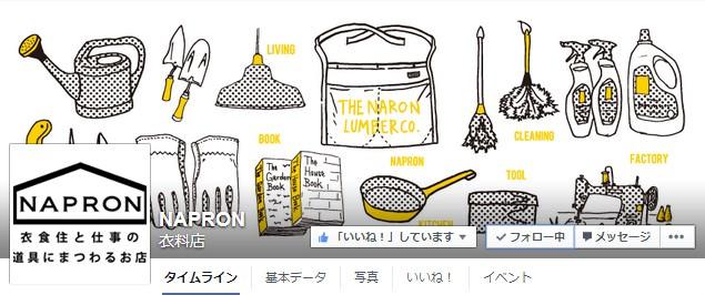 Facebook 活用 事例 プロモーション NAPRON/株式会社Ray カバー