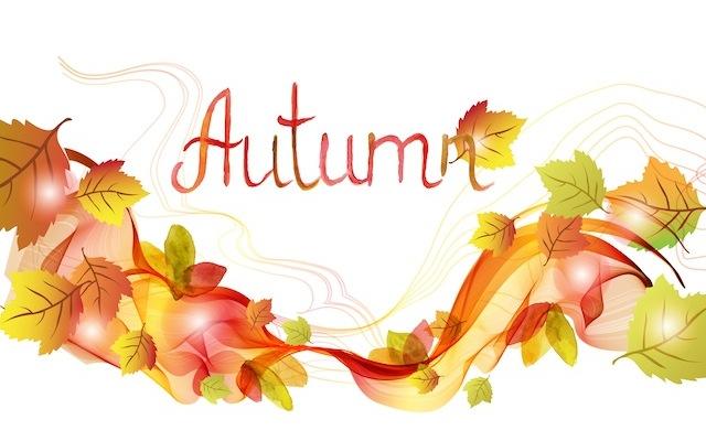 明日から使える!【ソーシャルメディア10月・11月お手本投稿まとめ】○○の秋、ハロウィンなど