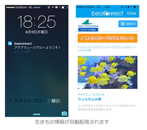 八景島シーパラダイス内で生き物情報が受信できるiPhoneアプリ