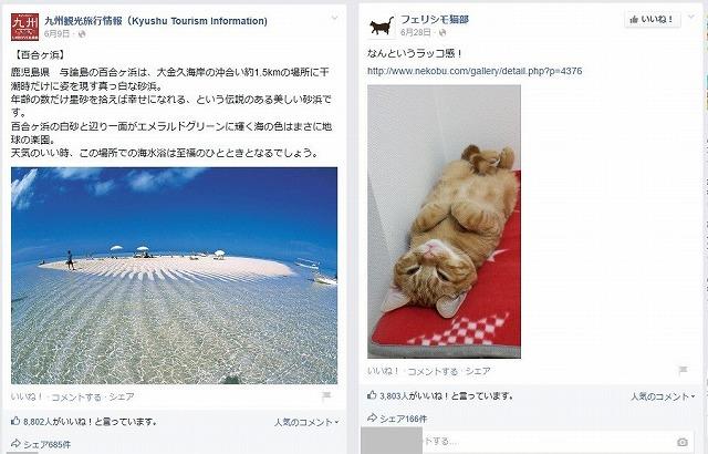 share5_Kyushu Tourism _felissimo